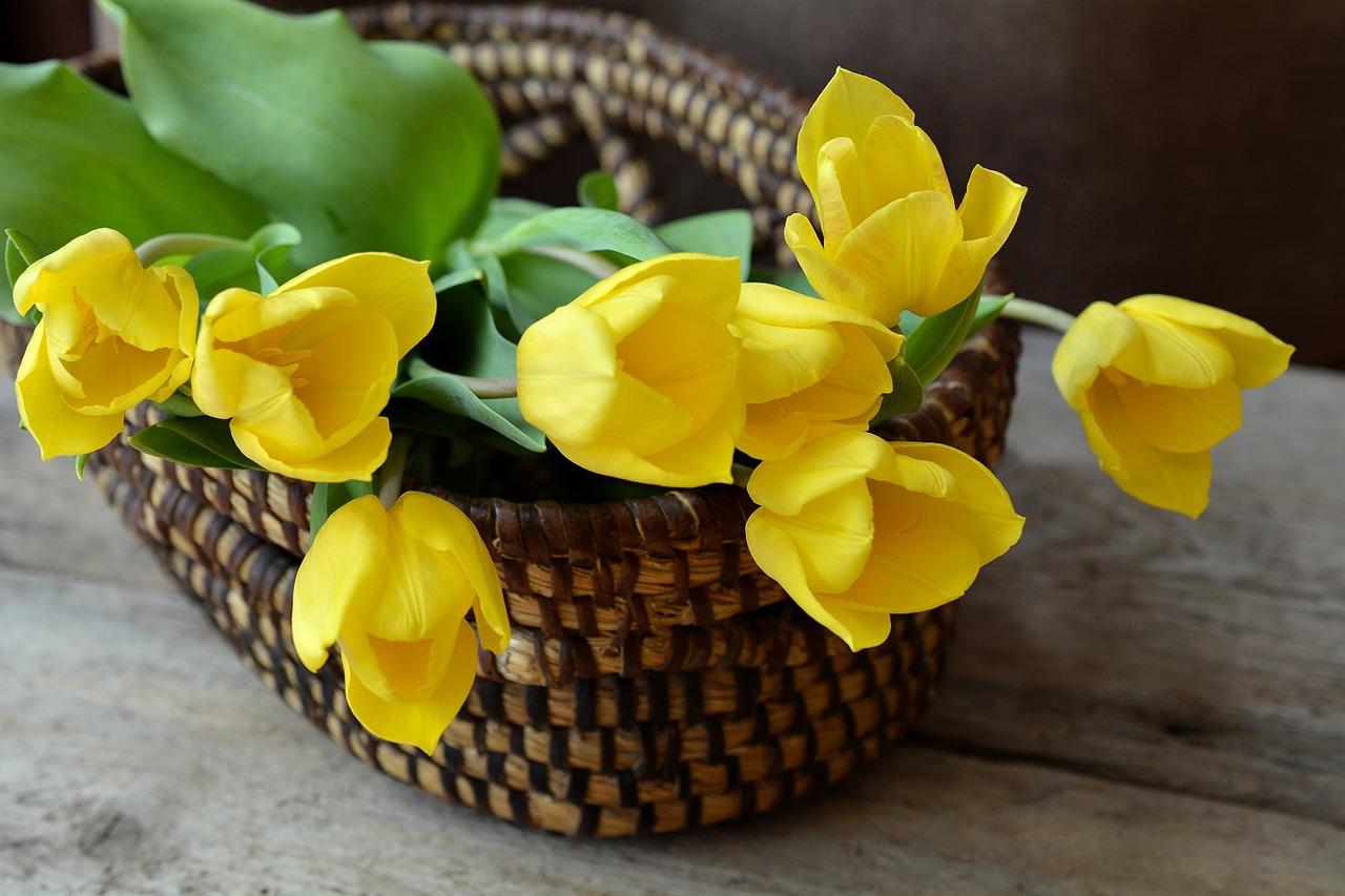 משלוח פרחים ברמת גן